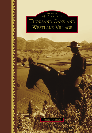 Jungleland By Jeffrey Wayne Maulhardt Arcadia Publishing Books